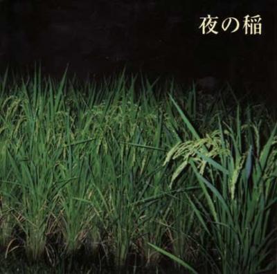 工藤礼子『夜の稲』